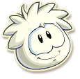 Wht puffle selected