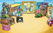 Instrument Hunt Pet Shop
