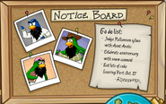 Notice Board October 2008
