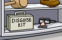 Disguise kit