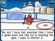 Ice Rink ice goal