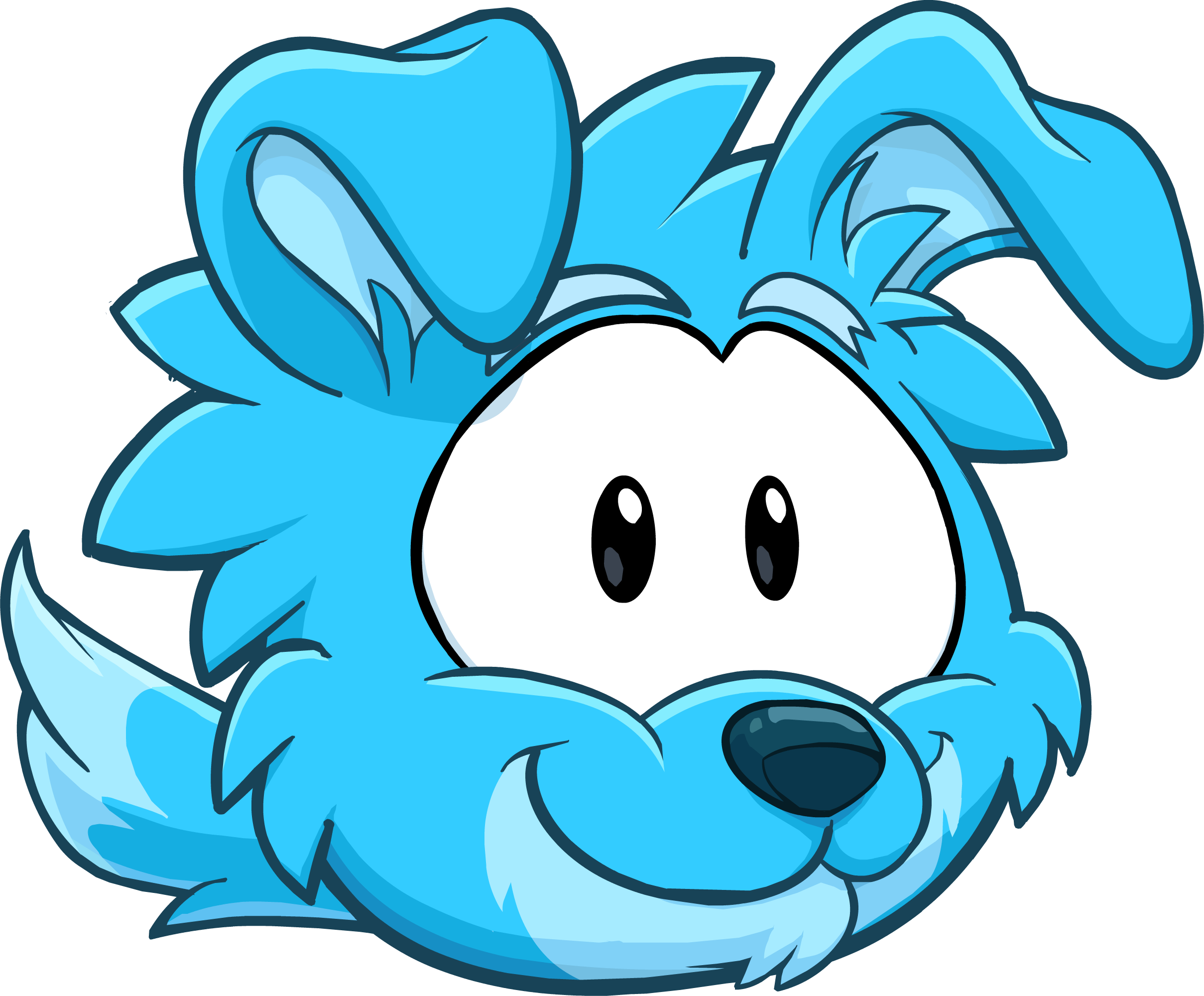 Blue Border Collie | Club Penguin Wiki | FANDOM powered by Wikia
