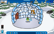 Iglu your penguin