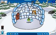 Iglu your penguin