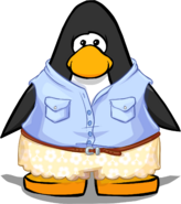 Clothing 24300 player card