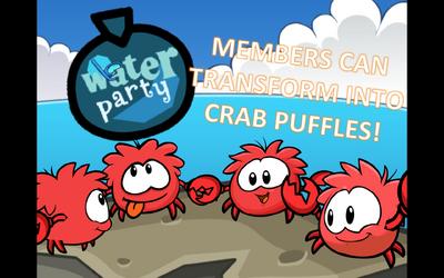 CrabPuffleLogin2013