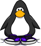 Purple united sneakers