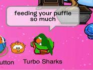 Turbo Sharks 1