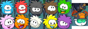 Puffle Chase Interface Sprites