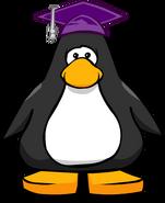Purple Graduation Cap on Player Card
