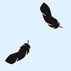 Fabric Feathers icon