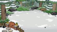 Bosque Ubicación Patio