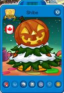 Shibe tarjetajugador Navidad