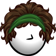 The Eco-Brunette clothing icon ID 1760