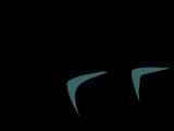 Anteojos de Sol Negros