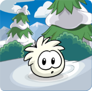Puffle Party 2013 Transformation Puffle White