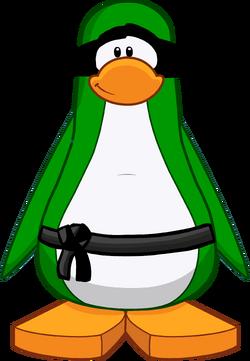 Green Ninja Custom