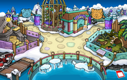 Puffle Medal Pin location