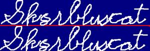 Sk8rbluscat2signature