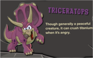 Purple Triceratops Description