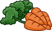 Bunch of 5 Carrots