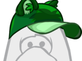 Green Raccoon Hat