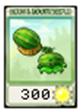 MelonPultSeed