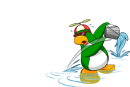 WaterRookie