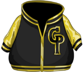 Gold Letterman Jacket clothing icon ID 4789