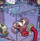 Operacion Hibernacion