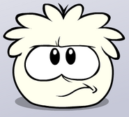 Angry White Puffle