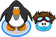 Puffle Hats shockofhair in game