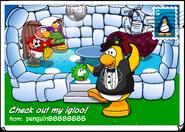 Check out my igloo postcard