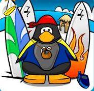 Barkjon surfer dude