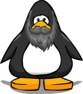 Grey Beard from a Player Card