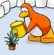 Better Igloos March 2008 cover penguin