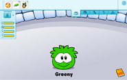 Green puffle care card