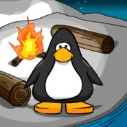 CampfireBGPC