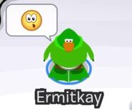 Ermitkay