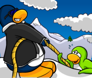 185?cb=20161031025649 psa secret missions club penguin wiki fandom powered by wikia how to solve club penguin mission 3 fuse box at suagrazia.org