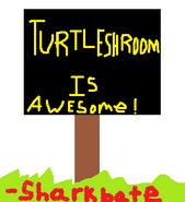 Ts-aweseom