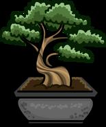 Bonsai Tree sprite 004
