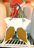 Herbert Chicken