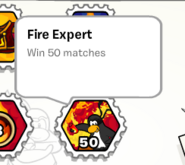 Fire expert stamp book