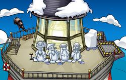 Snow Sculpture Showcase Beacon