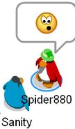 Spider sanity