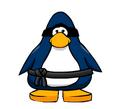 Swiss Ninja