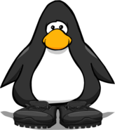 BlackHikingBootsPC