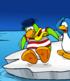 Iceberg card image