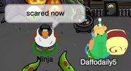 Ninja (a Daffodaily5): Estoy asustado